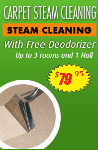 Carpet Steam Cleaning Green
